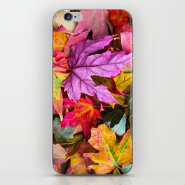 Indian Summer 4 iPhone Skin