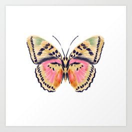 Butterfly Study no. 14 - butterfly art, watercolor butterfly, watercolor butterflies, painted butterfly, butterfly art, pink and yellow butterfly Art Print