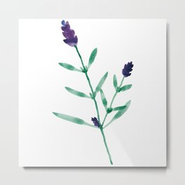 Flower Series - Lavender Metal Print