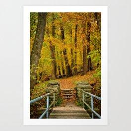 Hike In Autumn Woods Art Print