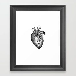 Vintage Heart Anatomy Framed Art Print