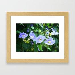 Time For Spring - Floral Art By Sharon Cummings Framed Art Print