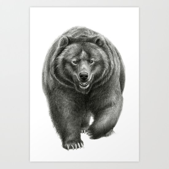 Brown Bear SK068 Art Print