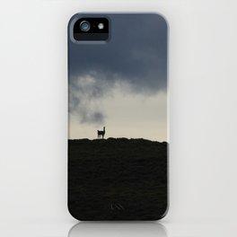 Vigilant guanaco iPhone Case