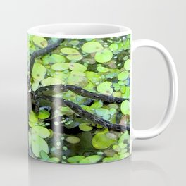 Watercolor Spider, Fishing Spider 02, Merchant's Millpond, North Carolina Coffee Mug
