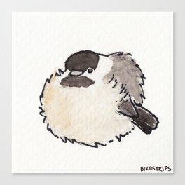 Bird no. 427: All Borbs are Good Canvas Print