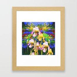WHITE & YELLOW IRIS BLUE GARDEN Framed Art Print