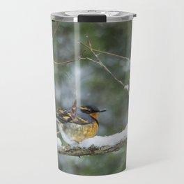 Male Varied Thrush, No. 2 Travel Mug