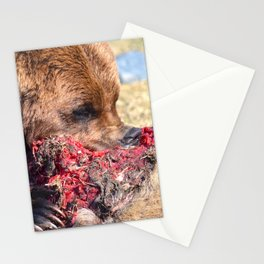 Hungry Alaskan Grizzly Bear - Eating Raw Meat Stationery Cards