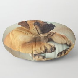 Boerboel - South African Mastiff Floor Pillow