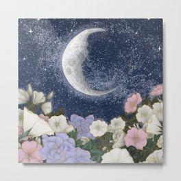 Moonlight in the Garden Colour Version Metal Print