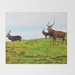 Stags on the hill Throw Blanket