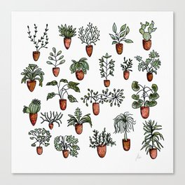 Succulent Houseplants in Terracotta Pots, Watercolor Cacti & Plant Wall Art Canvas Print