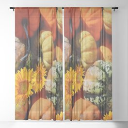 DECORATIVE  FALL SQUASH SUNFLOWER HARVEST Sheer Curtain