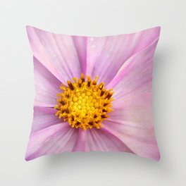Pink Cosmo Throw Pillow