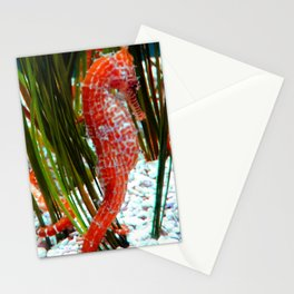 Do You Sea? Stationery Cards