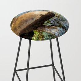 mushroom in swedish forest Bar Stool