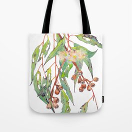 Watercolour eucalyptus tree branch with white flowers & gumnuts. Tote Bag