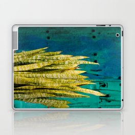Blue Green Gran Canaria Colors Laptop & iPad Skin