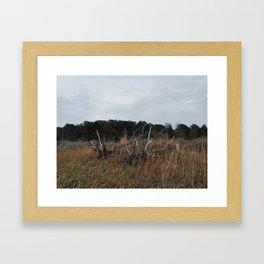 Hidden Beach Framed Art Print