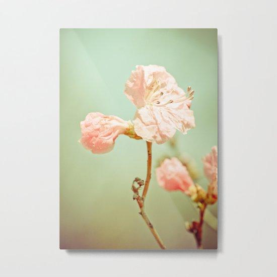 Aprils' Pink blossom Metal Print