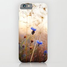 Sleeping Bumblebee Slim Case iPhone 6s