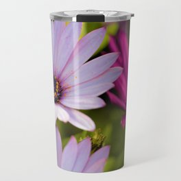 African Daisies by Reay of Light Photography Travel Mug
