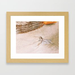 dragon fly beach Framed Art Print