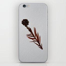 Sequoia Sempervirens- 11 Nov  iPhone Skin