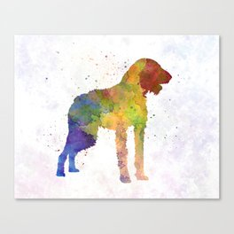 German Wirehaired Pointer in watercolor Canvas Print