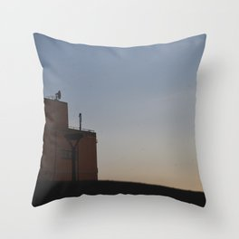 Nobody Knows Throw Pillow