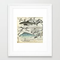 notebook Framed Art Prints featuring Sealife Notebook by Common Design