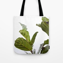 Fiddle Leaf Fig  |  The Houseplant Collection Tote Bag