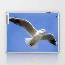 Seagull in flight Laptop & iPad Skin