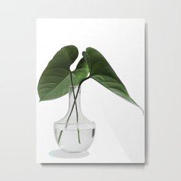 Caladium Cuttings in a Vase Metal Print