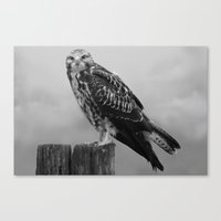 hawk Canvas Prints featuring Hawk by StaticHaven