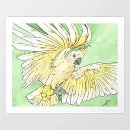 flying yellow crest cockatoo painting Art Print