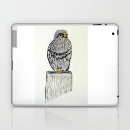 Fine Art New Zealand  Falcon in Graphite and Charcoal on 300 gsm  Laptop & iPad Skin
