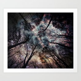 Starry Sky in the Forest Art Print