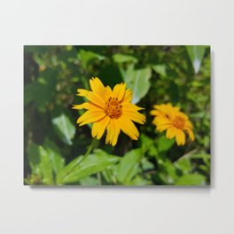 Beach Sunflower Metal Print