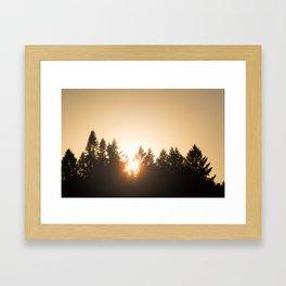 Oregon forest sunset Framed Art Print