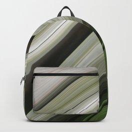 Evergreen Desert Landscape Backpack