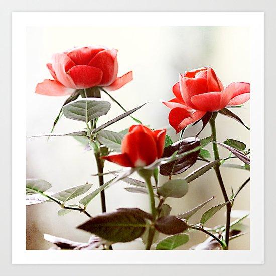 Romantic roses(8). Art Print