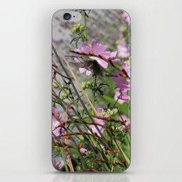 Hummingbird in Flight 2 iPhone Skin