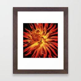 Afire Framed Art Print