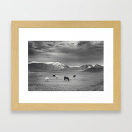 Horses in the Mountains Framed Art Print