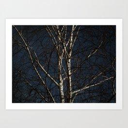 White Tree Art Print