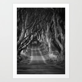 The Dark Hedge's B&W Art Print