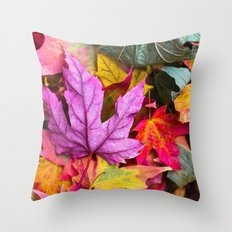 Indian Summer 4 Throw Pillow