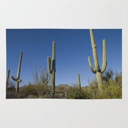 Carol M Highsmith - Saguaro Cactus near Tucson, Arizona 3 Rug